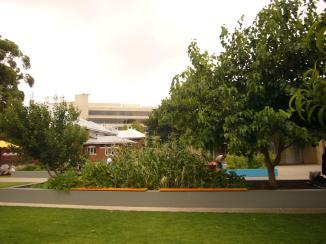 Perth Jan3 2013 260