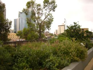 Perth Jan3 2013 273