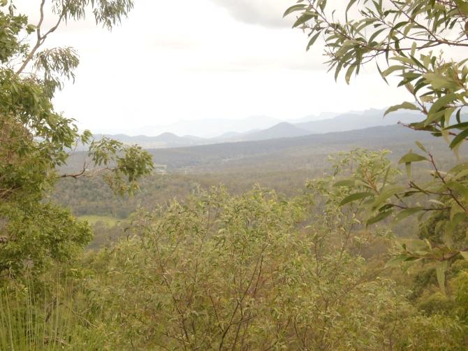 Buhse's Lookout April 2013 061