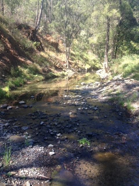 country stream, south east Queensland, Australia