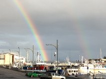 Hobart rainbow