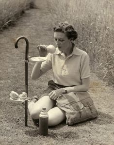 picnic stick