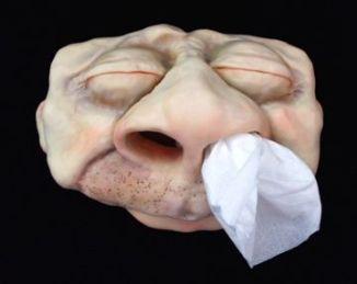 nose 1