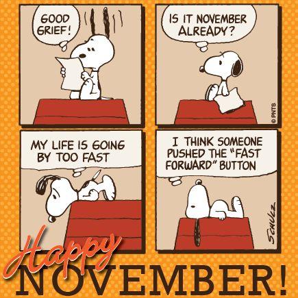 Novemeber