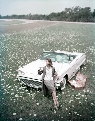 picnic car