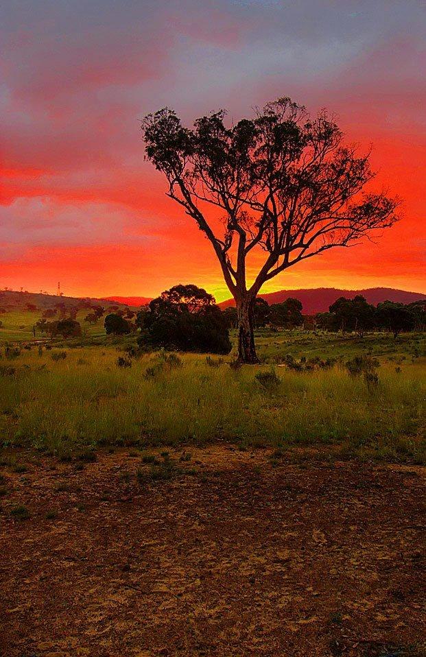 Australia Country NSW.