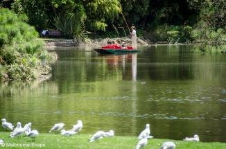 PUNTING - ROYAL BOTANIC GARDENS MELBOURNE