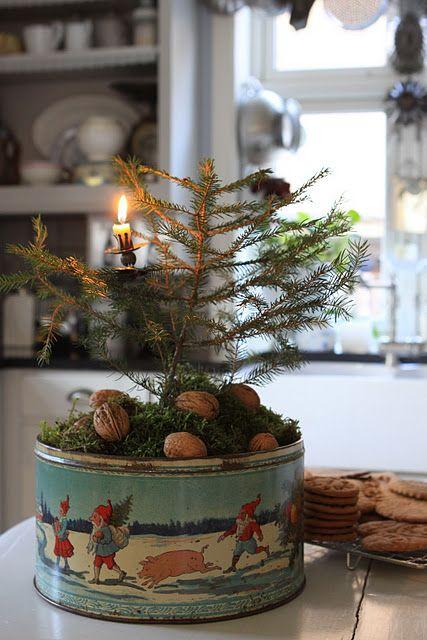 tree tin